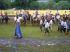XXIV Rodeio Crioulo Interestadual