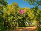 Nosso Parque de Rodeio, nosso Centro de Eventos, um Lugar Fantástico criado por Deus